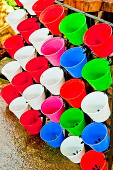 Free Color Full Flowerpot Royalty Free Stock Images - 31304449