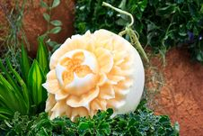 Free Cantaloup Carving 4 Stock Images - 31307444