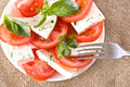 Free Salad With Tomatoes And Cheese Royalty Free Stock Image - 31312896