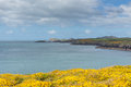 Free St Brides Bay Wales Stock Photos - 31314383