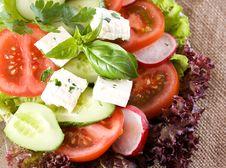Free Salad Royalty Free Stock Photos - 31313548