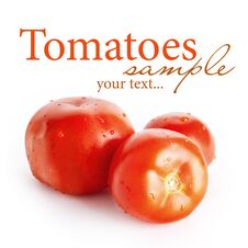 Free Three Tomatoes Stock Photography - 31317822