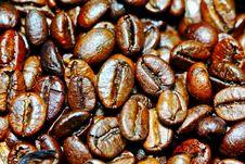 Free Coffee Beans Stock Photos - 31324063