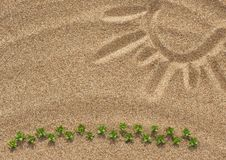 Free Drawing Sun On The Sand And Plants Stock Image - 31325921