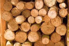 Free Saw Cut Logs Stock Photos - 31327703
