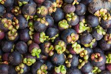 Free Mangosteen Royalty Free Stock Photos - 31329768