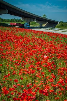Red Poppy Field  And Highwa Overpass Stock Photography
