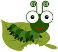 Free Caterpillar Meal Time Stock Photography - 31342342