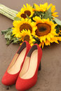 Free Sunflower And Shoes Stock Photography - 31347262