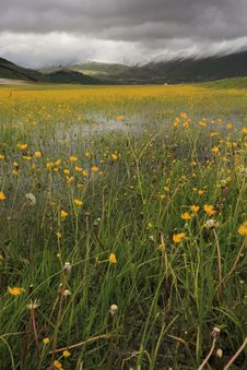 Castelluccio Before The Storm Royalty Free Stock Image