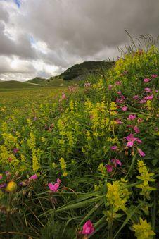 Idyllic Mountain Landscape Royalty Free Stock Image