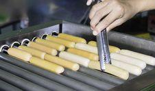 Free Hot Dog Stock Photo - 31362030