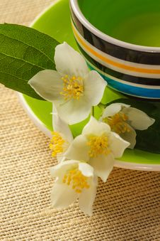 Free Jasmine Tea Stock Photos - 31365963