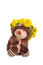 Free Hedgehog In A Wreath Of Dandelions Royalty Free Stock Photos - 31379478