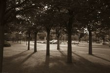 Free Shadows In The Car Park Royalty Free Stock Photo - 31370625