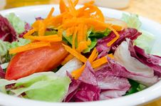 Garden Salad Stock Photography