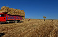 Free Bale Of Straw Royalty Free Stock Photography - 31381717