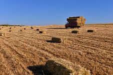 Free Bale Of Straw Stock Photography - 31382102