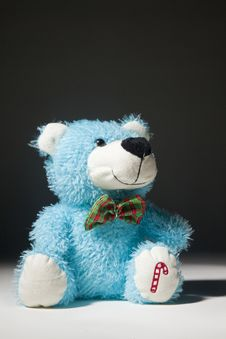 Free Blue Bear Looking Up Stock Photos - 31383003