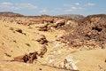 Free Egypt, The Mountains Of The Sinai Desert Royalty Free Stock Photo - 31392315