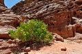 Free Egypt, The Mountains Of The Sinai Desert Stock Images - 31392624
