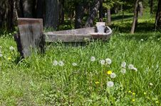 Old Wooden Boat On The Grass