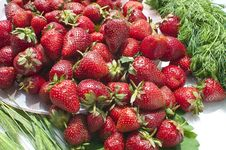 Free Strawberries. Stock Photography - 31394222