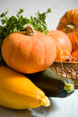 Free Autumn Vegetables Stock Photography - 3140832