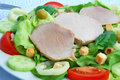 Free Tomato-lettuce Salad With Pork Royalty Free Stock Photo - 3147995
