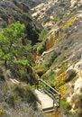 Free Canyon View Stock Image - 3148551