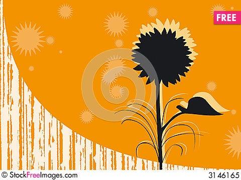 Free Orange Background Royalty Free Stock Photo - 3146165