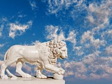 Free Lion Stock Photo - 3140550