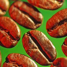Free Grains Of Coffee Stock Image - 3140661