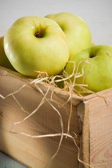 Free Autumn Apples Royalty Free Stock Image - 3140836