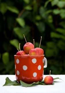 Free Small Red Apples Royalty Free Stock Photo - 3140865