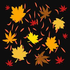 Free Autumn Leaves Illustrated Stock Photo - 3142310