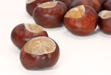 Free Chestnuts Royalty Free Stock Images - 3144189