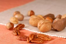 Free Variety Of Mixed Nuts Royalty Free Stock Photo - 3144915
