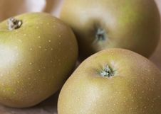 Free Russet Apples Stock Images - 3144954
