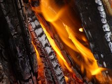 Free Close View On Bonfire Stock Photography - 3145052