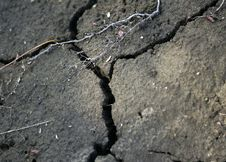 Free Cracked Dirt Royalty Free Stock Photography - 3145147