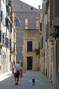 Free Dog Walking In Venice Royalty Free Stock Photo - 3145755