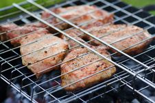 Free Barbecue Meat Stock Photos - 3146103
