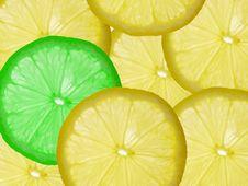 Free Lemon Stock Photography - 3146882