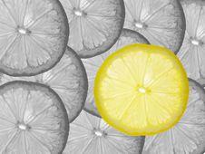 Free Lemon Royalty Free Stock Photo - 3146955