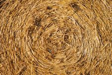 Round Bale Of Hay Royalty Free Stock Image