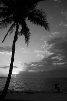 Free Watching The Sunset Stock Photo - 3148340