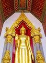 Free Standing Buddha Stock Photography - 31400252