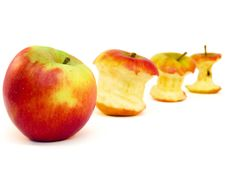 Free Apple And Apple Cores  On White Stock Photo - 31405080