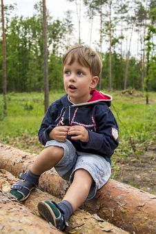 Free Cute Three Years Boy In The Forest On Logs Stock Image - 31415141